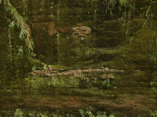 玉福吊橋下方的古生物化石遺跡 相片來源:竹山天梯山林瓦舍民宿