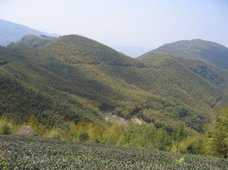 大鞍里名稱之由來-馬鞍狀之山稜線 相片來源:竹山天梯山林瓦舍民宿