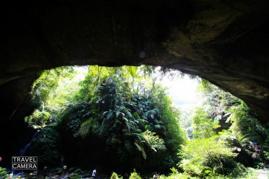 蝙蝠洞 相片來源:拉拉山北橫貫下巴陵溫泉山莊