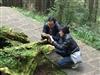 香港李先生夫妻阿里山一日遊