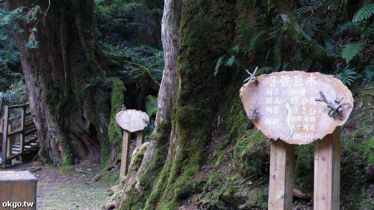 周邊景點 相片來源:拉拉山民宿‧桃花源農莊