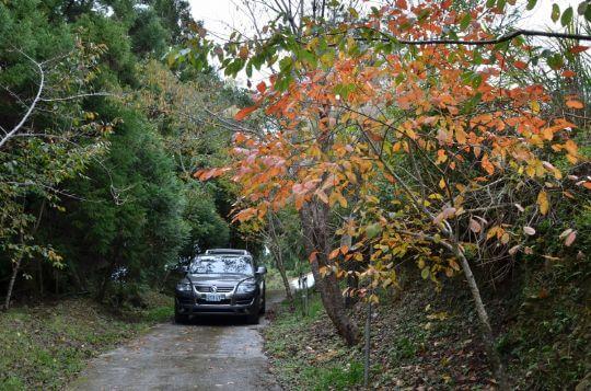進入農場的路較陡,不過一般的車1.5都開的上來 相片來源:拉拉山民宿‧桃花源農莊