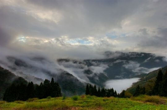 9601梁先生拍攝 相片來源:拉拉山觀雲休憩農莊
