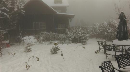 2016 下雪了 相片來源:拉拉山觀雲休憩農莊