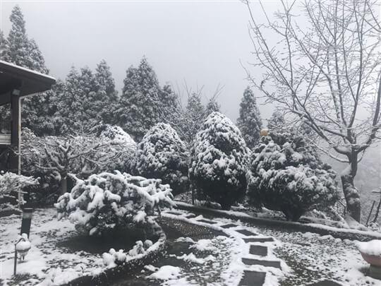 相片來源:拉拉山觀雲休憩農莊