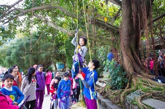 攀樹 相片來源:淡水淡江農場