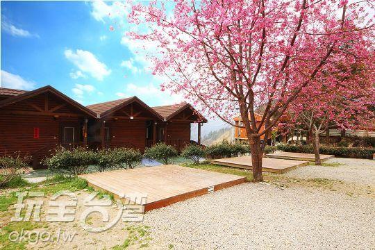 櫻花木屋外觀