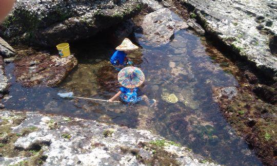 潮間帶戲水池