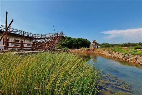 相片來源:清水高美溼地.美馨的家