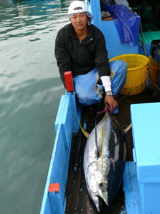 40公斤大鮪魚 相片來源:綠島田の家民宿