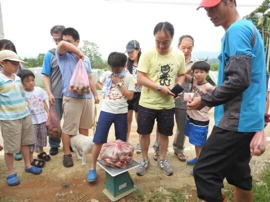 開心採果,體驗鄉村 相片來源:埔里天籟休閒民宿