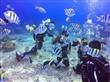 潛水相簿1