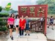 阿里山日出-云海一次满足 感谢🙏大马朋友12月莅临宝岛 台湾旅游包车八日游