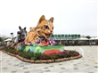 台中花卉博覽會