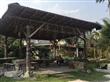民宿庭園景觀