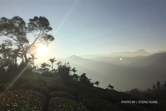 霧境周邊景點 相片來源:竹山霧境民宿