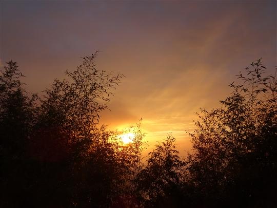 1061113-夕陽美景