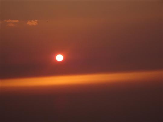 相招看夕陽