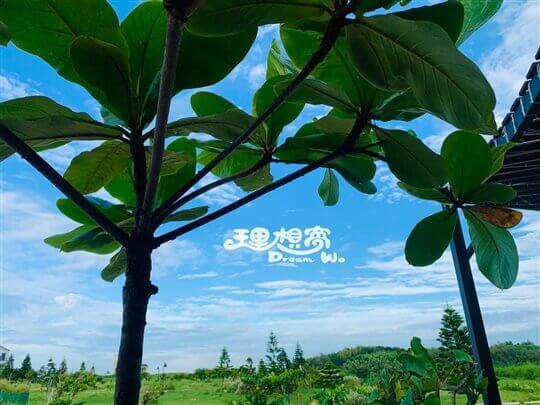 相片來源:澎湖理想窩民宿