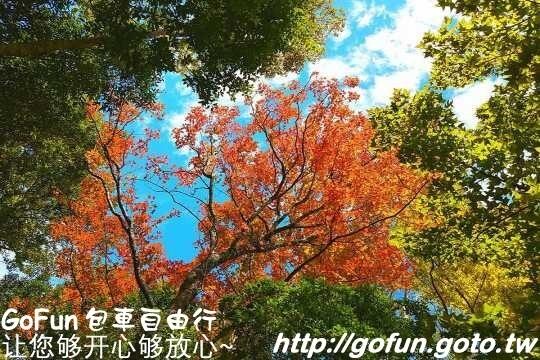 南投景點足跡~  GoFun景點實拍