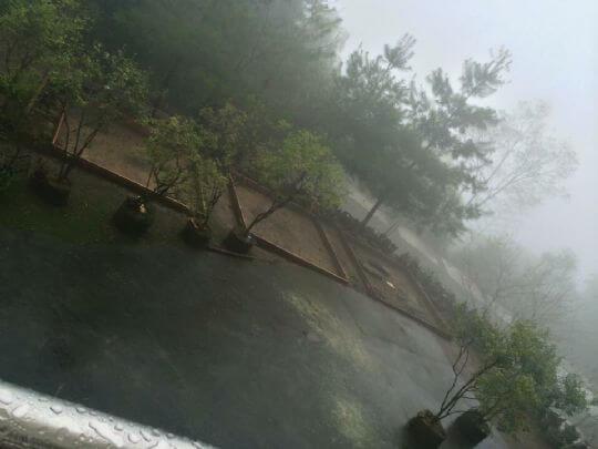 露營盛況 相片來源:溪頭和興露營區