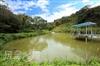 山泉水釣魚池