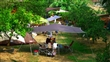 草地露營區