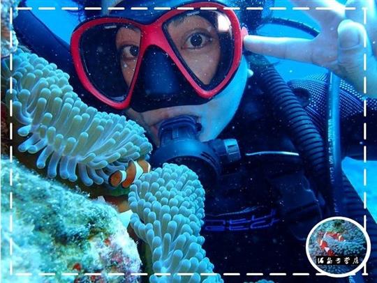 綠島‧聯慶潛水莊園