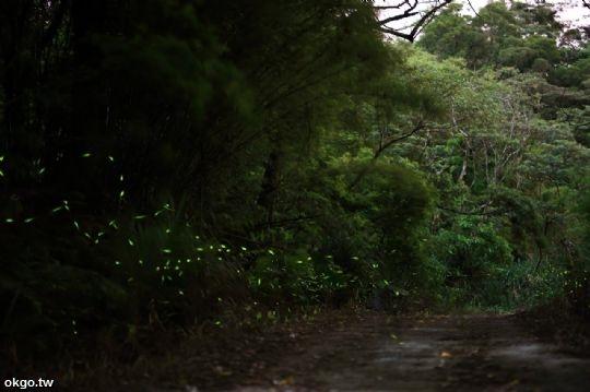 新竹民宿‧南園落水宿泊