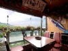 桃園石門水庫~順將活魚餐廳