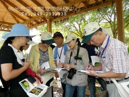 桃米社區生態旅遊服務中心