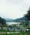 鹿谷麒麟潭-東湖露營區-溪頭露營區