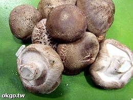 國賢菇類農場-魚池香菇