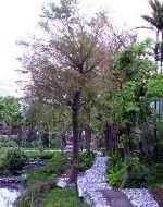 處處可見之生態景觀林園休憩園地