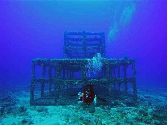 綠島‧潛質·潛水x住宿