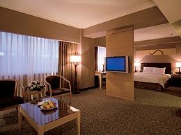 台北凱撒大飯店-精緻套房