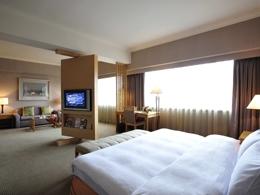 台北凱撒大飯店-行政套房