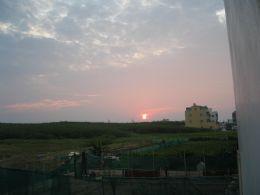 烤花園夕陽