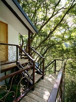充滿創意巧思的樹屋