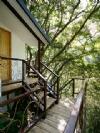 拉拉山留雲軒森林渡假山莊(樹屋)