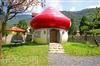蘑菇山林民宿露營區 | 埔里住宿 | 埔里露營