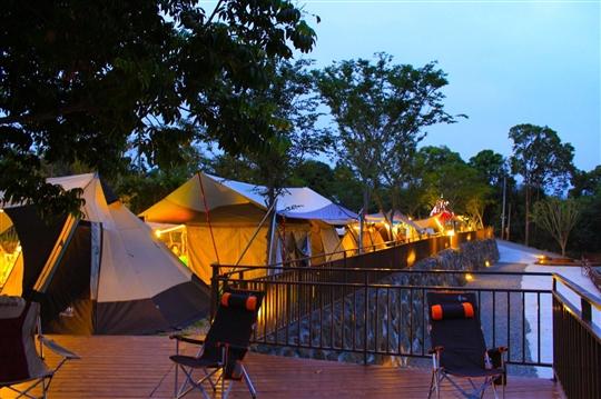 溪頭露營‧鹿過星境露營區