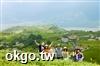 草泥馬專業包車旅遊車隊‧台灣包車自由行旅遊