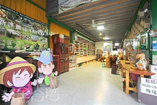 台中新社民宿‧新峰農場Shin Fong Farm(採果體驗)
