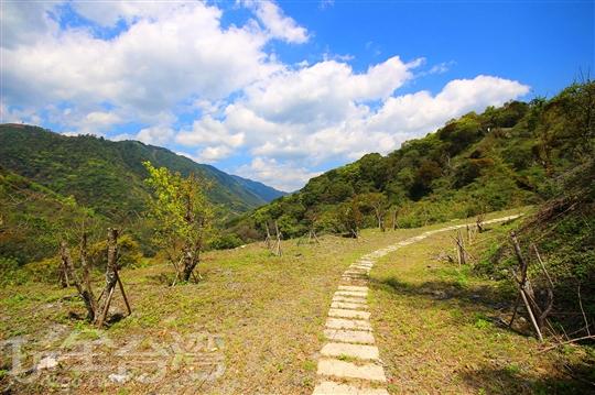 清境山隱森林民宿·露營區