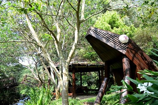 桃米生態村旅遊服務官方網站