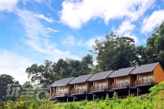 竹山橄欖園森林度假民宿‧露營