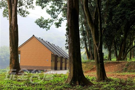 橄欖園森林度假民宿‧露營