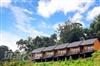 橄欖園森林度假民宿|竹山民宿‧竹山露營