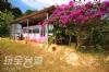 埔里露營‧水墻映月景觀露營區